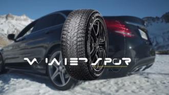 Dunlop Winter Sport 5 6